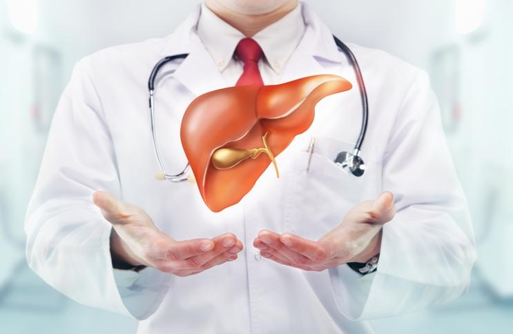 Image result for 肝排毒的真相
